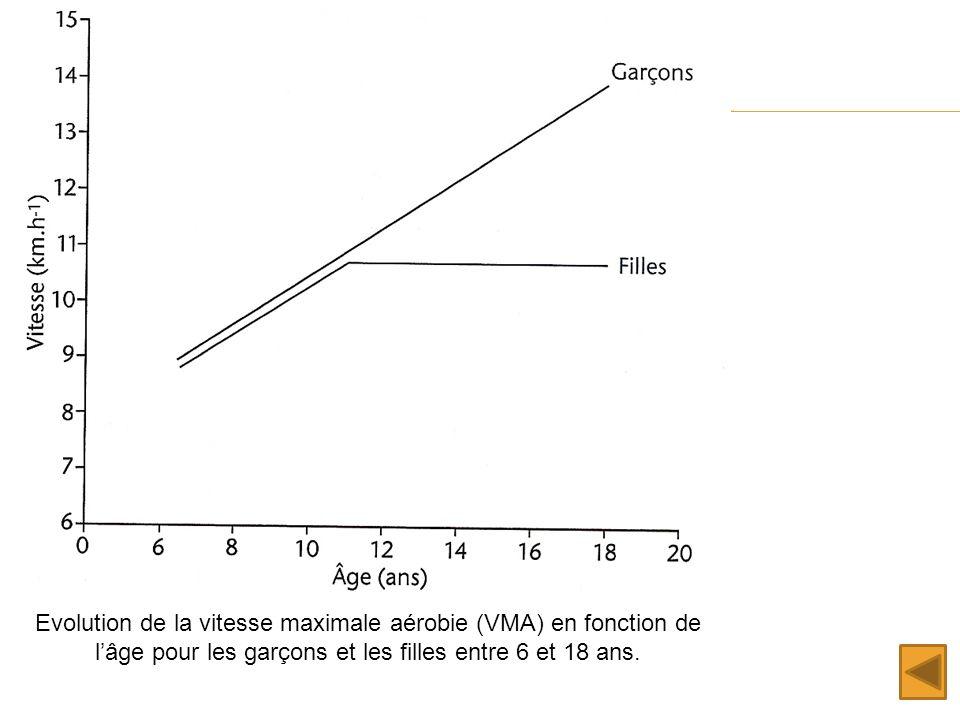 Evolution de la vitesse maximale aérobie (VMA) en fonction de l'âge pour les garçons et les filles entre 6 et 18 ans.