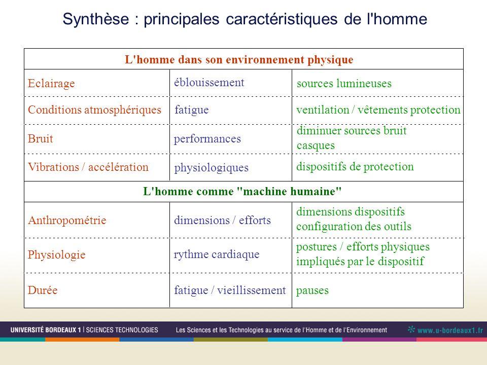 Synthèse : principales caractéristiques de l homme