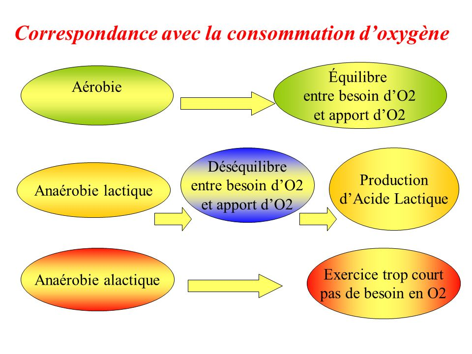 Correspondance avec la consommation d'oxygène