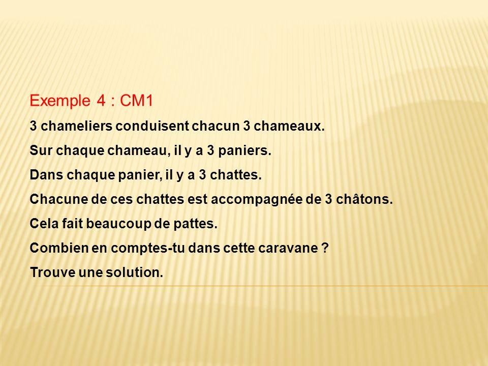 Exemple 4 : CM1 3 chameliers conduisent chacun 3 chameaux.
