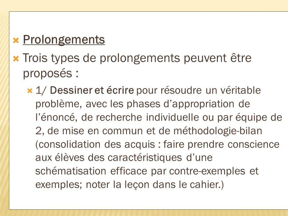 Trois types de prolongements peuvent être proposés :