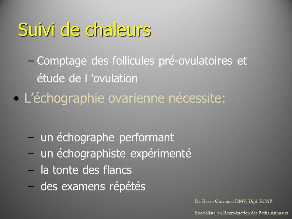 Suivi de chaleurs L'échographie ovarienne nécessite: