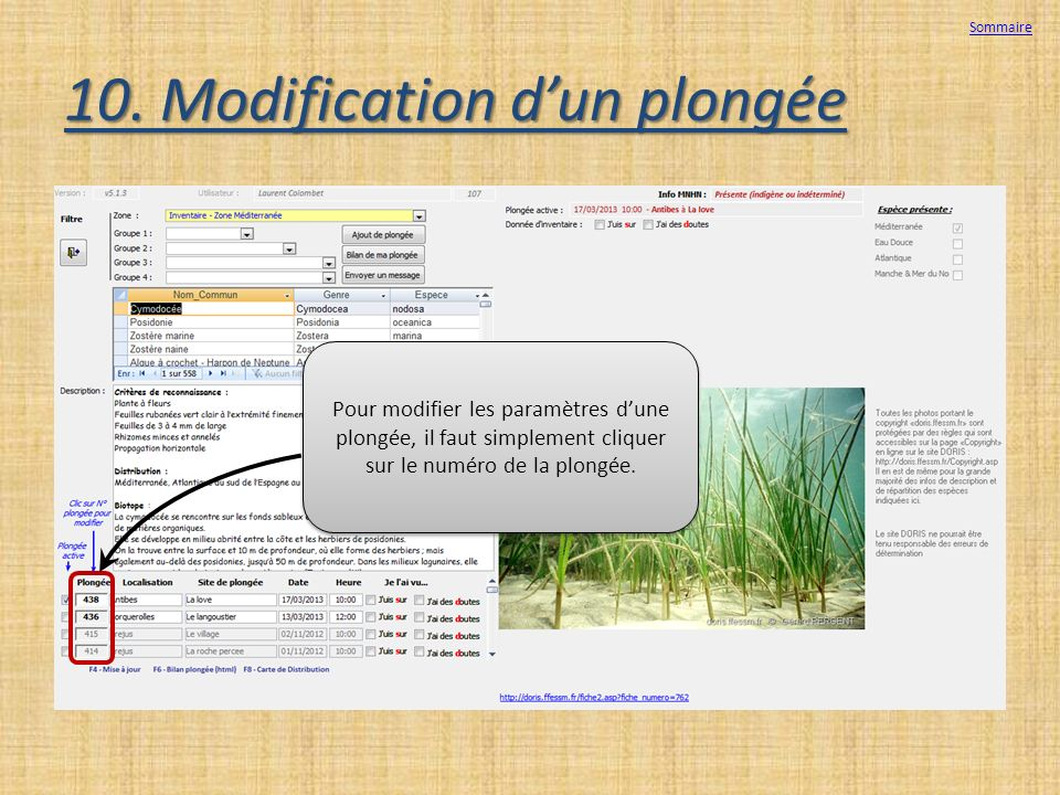 10. Modification d'un plongée