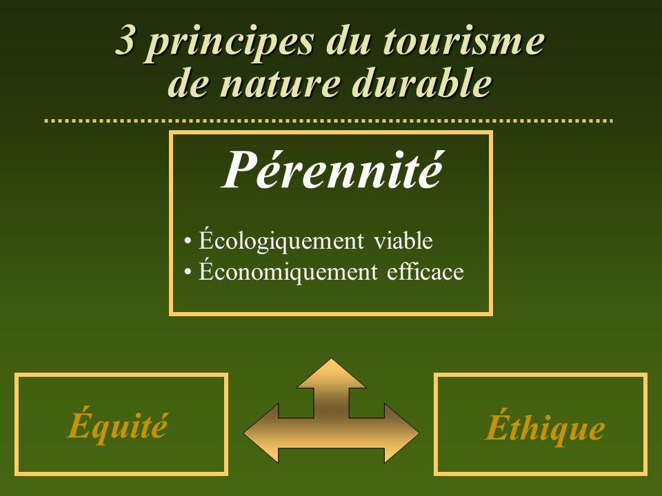 Pérennité 3 principes du tourisme de nature durable Équité Éthique