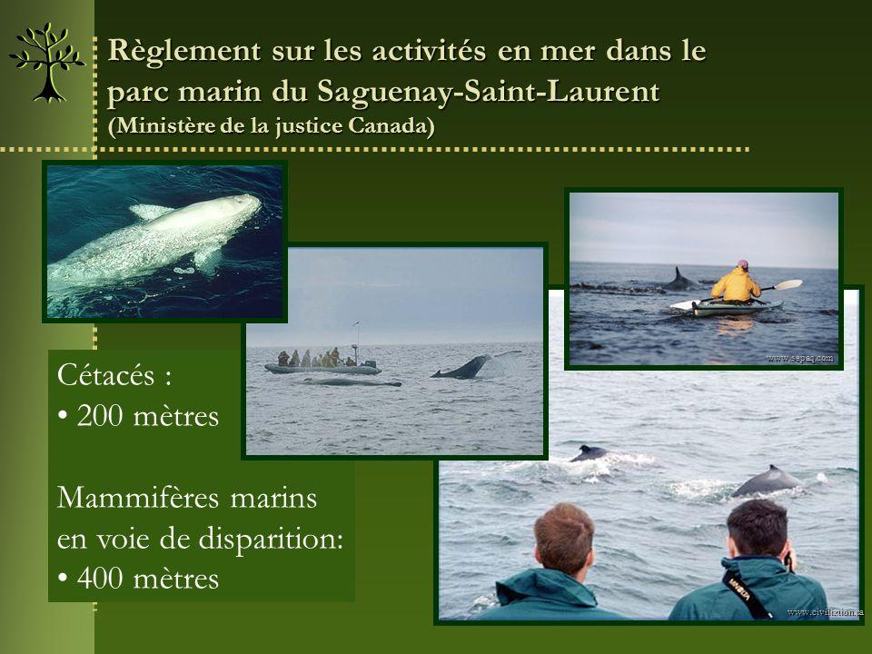 Règlement sur les activités en mer dans le
