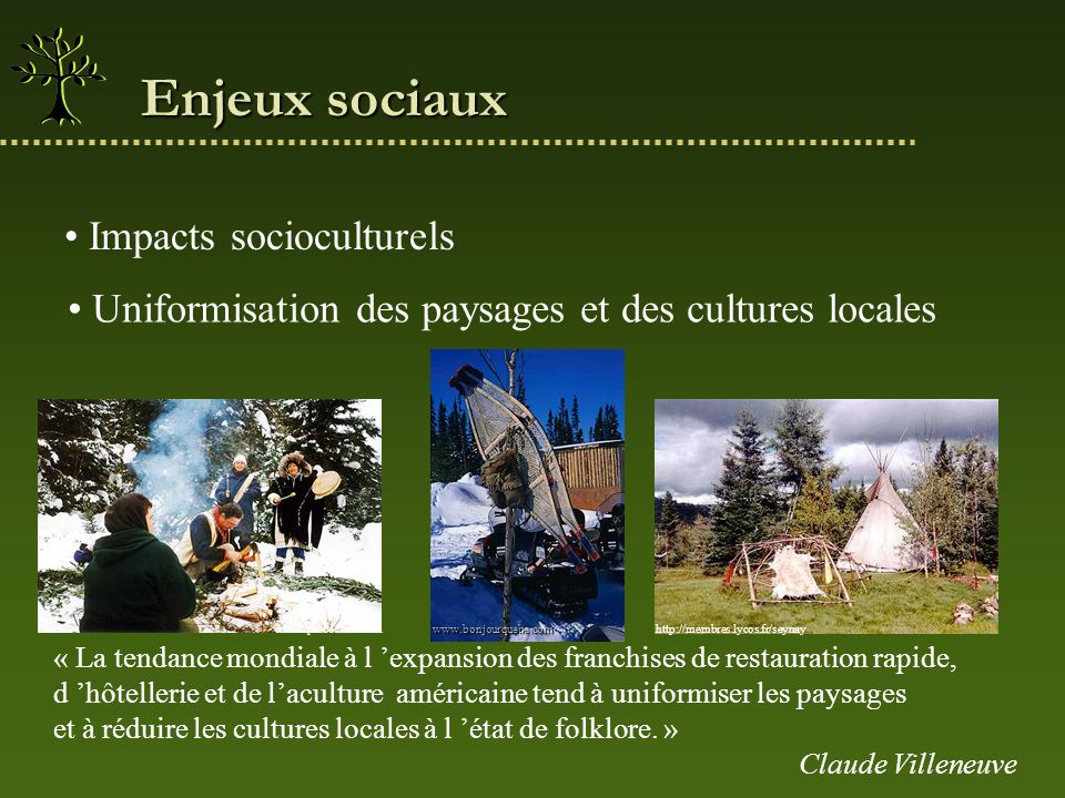 Uniformisation des paysages et des cultures locales