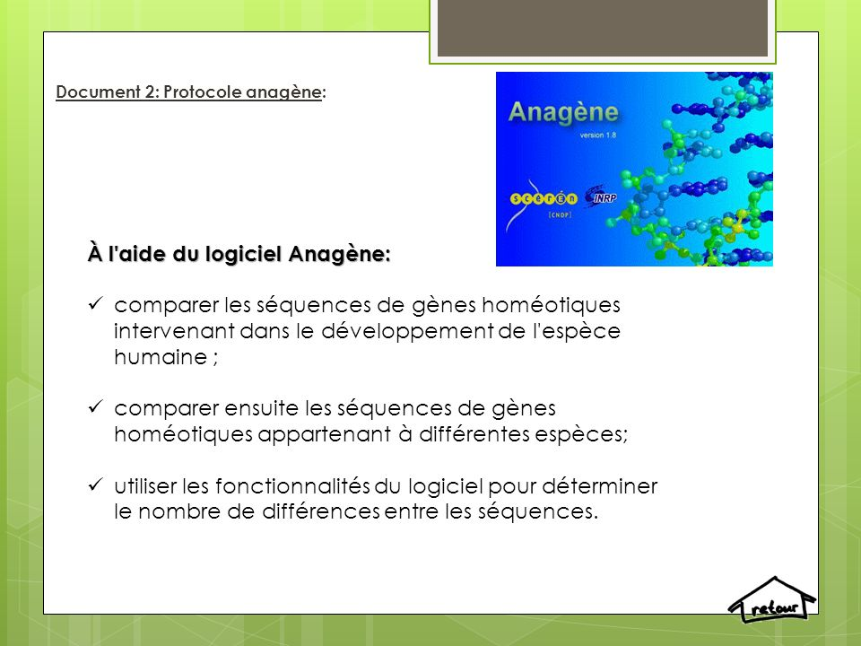 Document 2: Protocole anagène: