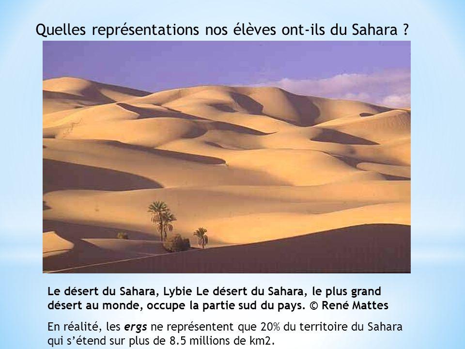 Quelles représentations nos élèves ont-ils du Sahara