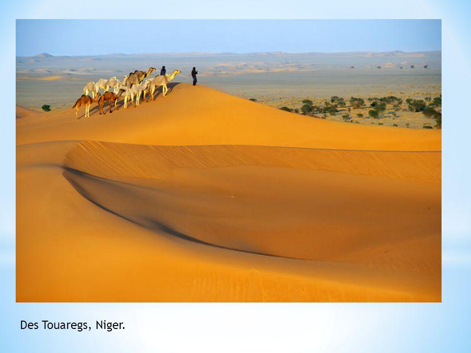 Des Touaregs, Niger.