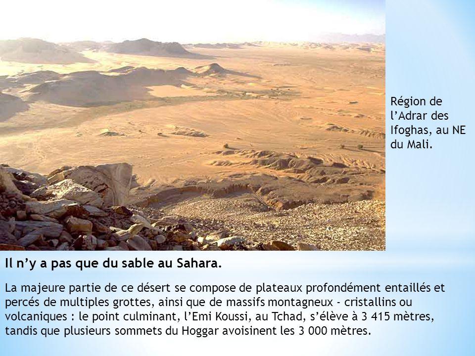 Il n'y a pas que du sable au Sahara.