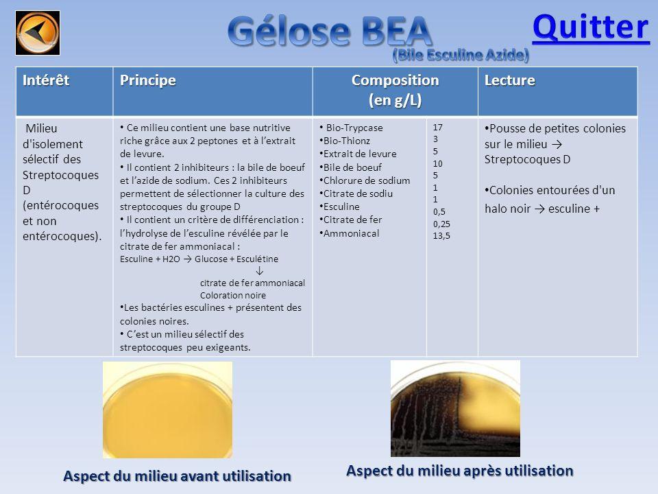 Gélose BEA Quitter (Bile Esculine Azide) Intérêt Principe Composition