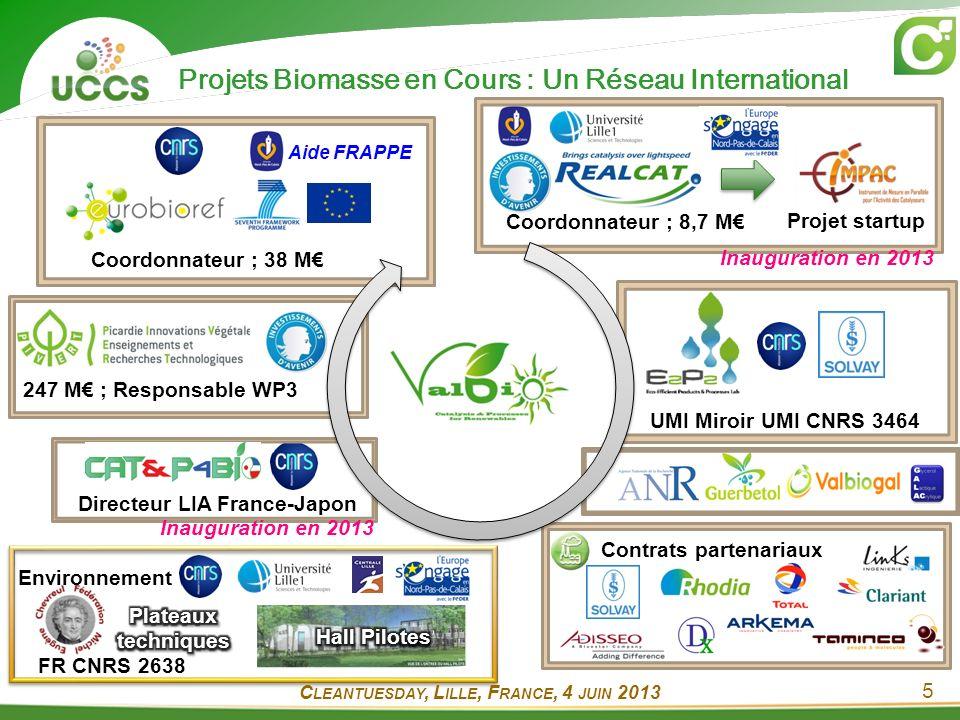 Projets Biomasse en Cours : Un Réseau International