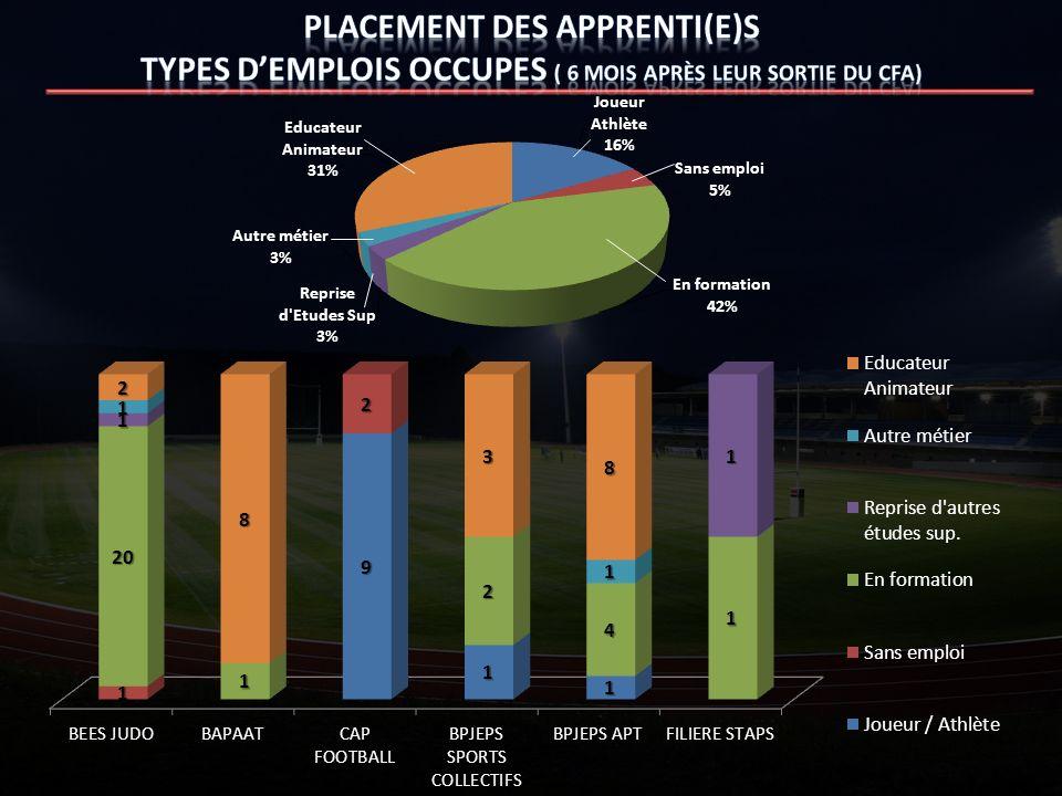 Placement des apprenti(e)s TYPES D'eMPLOIS OCCUPES ( 6 mois après leur sortie du CFA)