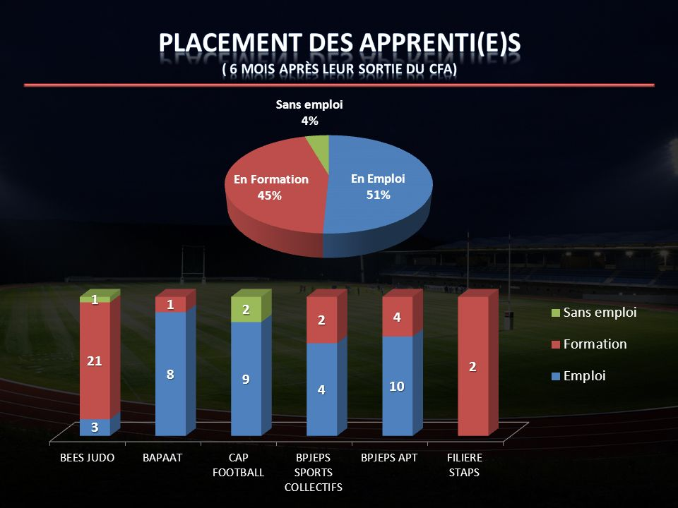 Placement des apprenti(e)s ( 6 mois après leur sortie du CFA)