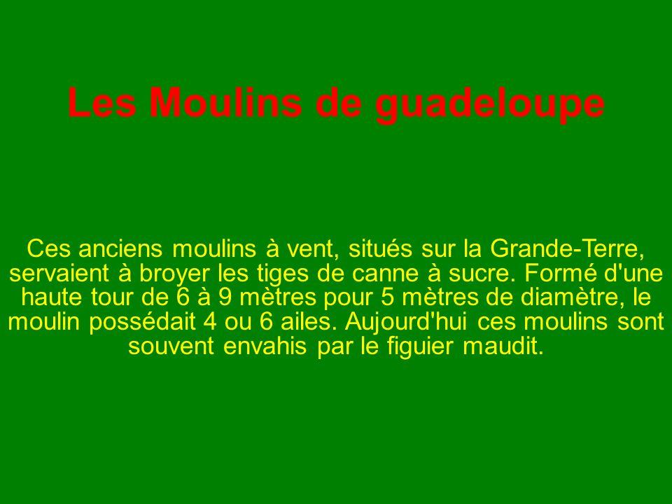 Les Moulins de guadeloupe