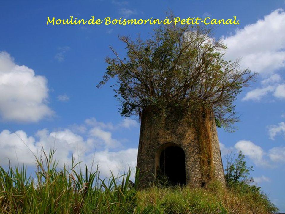 Moulin de Boismorin à Petit-Canal.