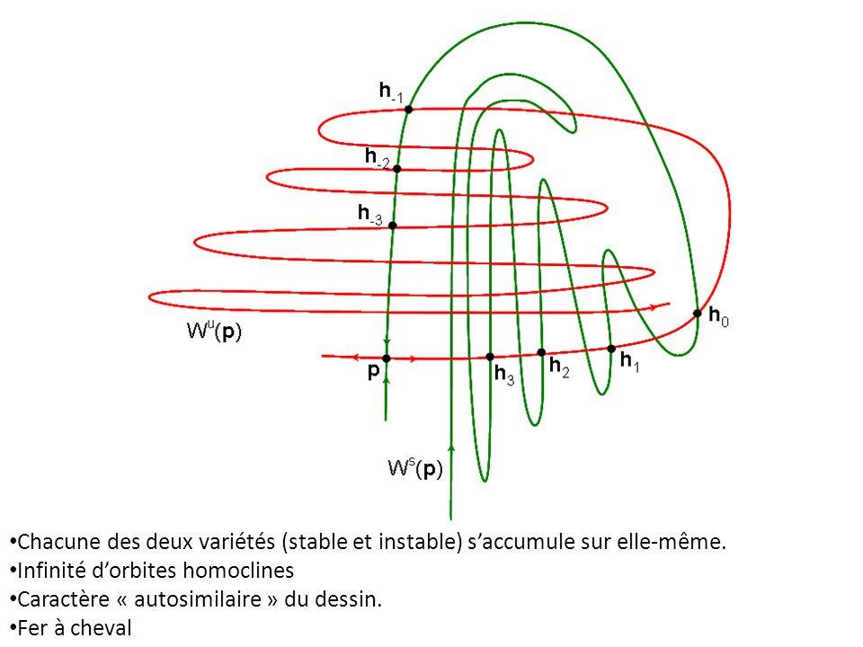 Chacune des deux variétés (stable et instable) s'accumule sur elle-même.