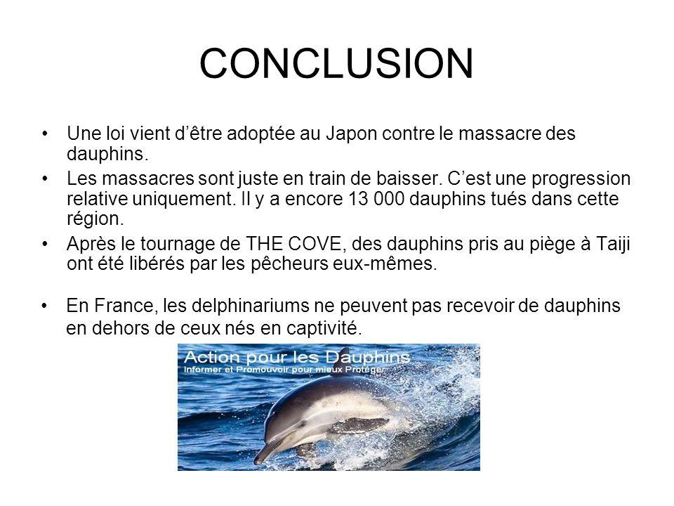 CONCLUSION Une loi vient d'être adoptée au Japon contre le massacre des dauphins.