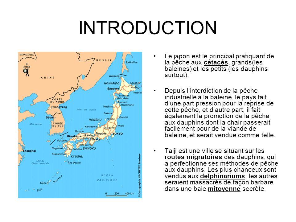 INTRODUCTION Le japon est le principal pratiquant de la pêche aux cétacés, grands(les baleines) et les petits (les dauphins surtout).