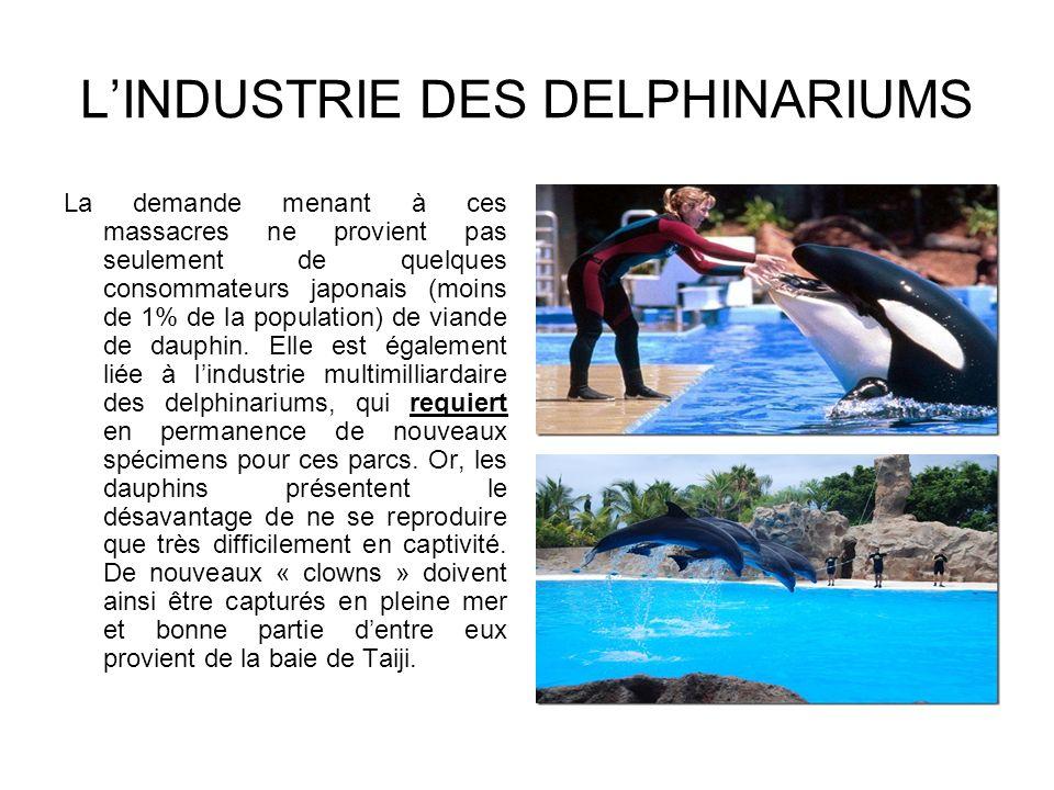 L'INDUSTRIE DES DELPHINARIUMS