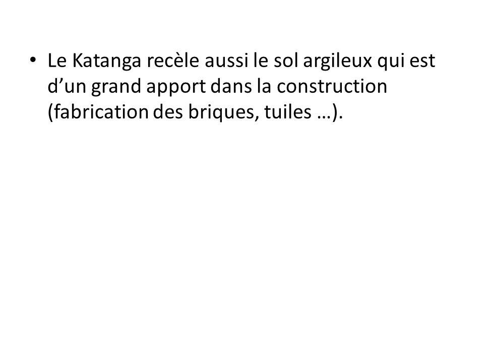 Le Katanga recèle aussi le sol argileux qui est d'un grand apport dans la construction (fabrication des briques, tuiles …).