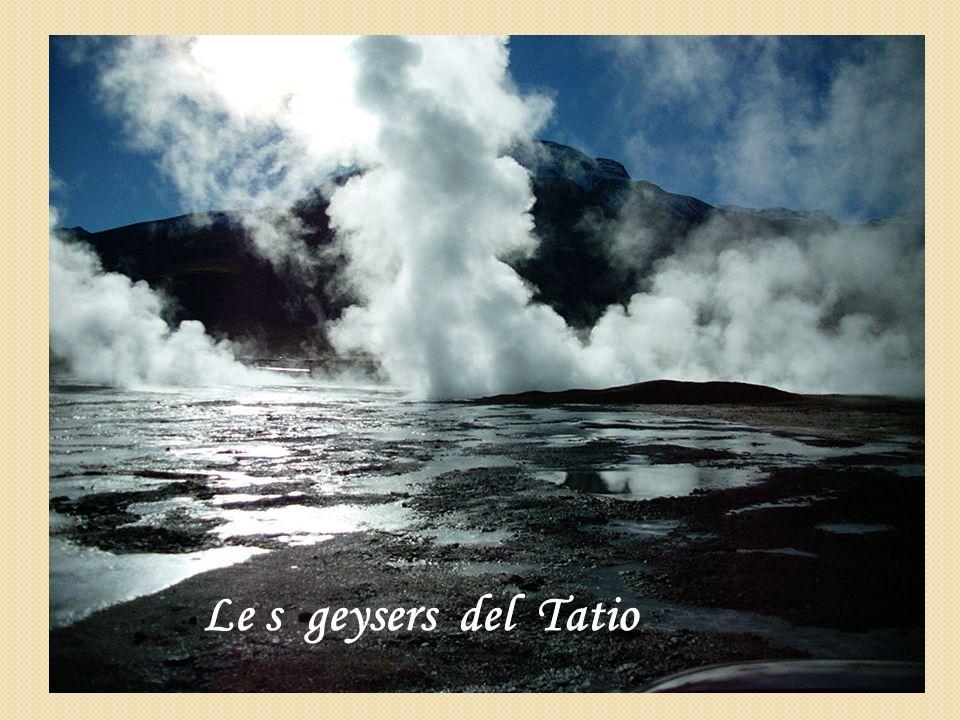 Le s geysers del Tatio