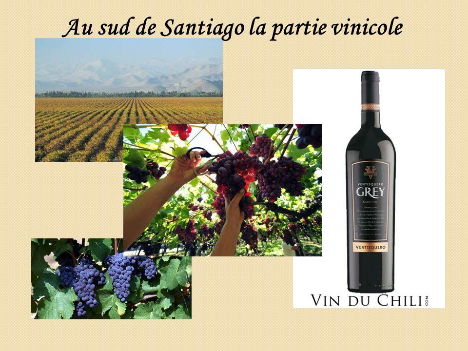 Au sud de Santiago la partie vinicole