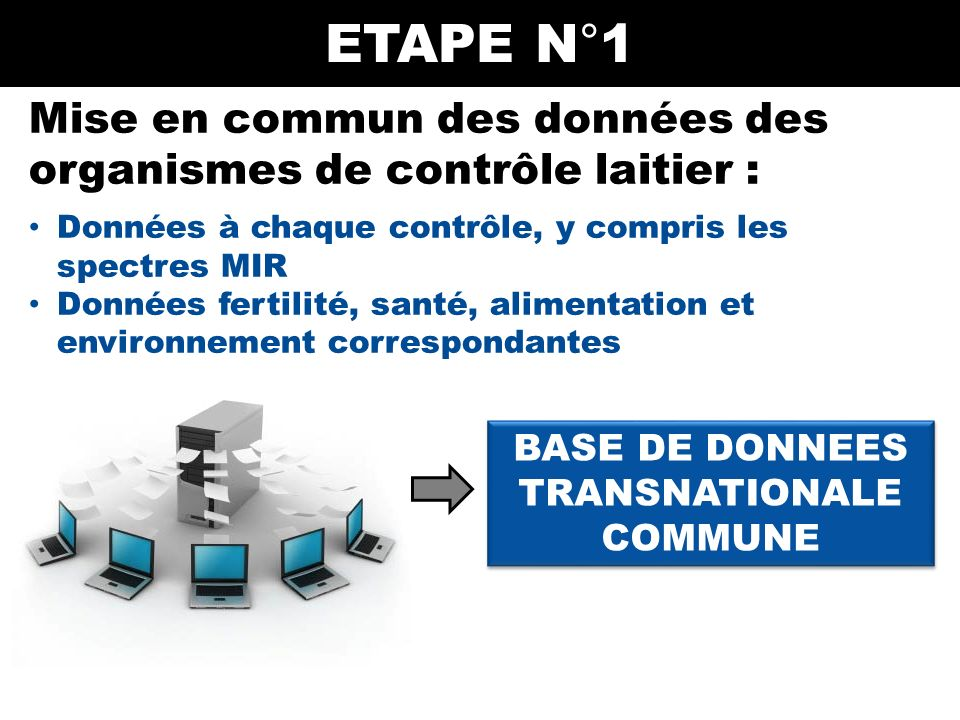 BASE DE DONNEES TRANSNATIONALE
