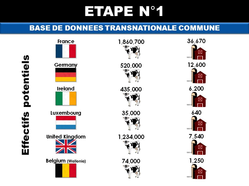 BASE DE DONNEES TRANSNATIONALE COMMUNE