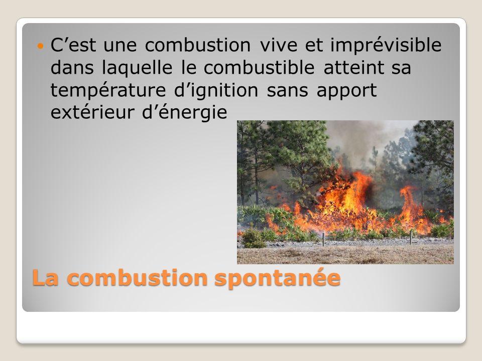 La combustion spontanée