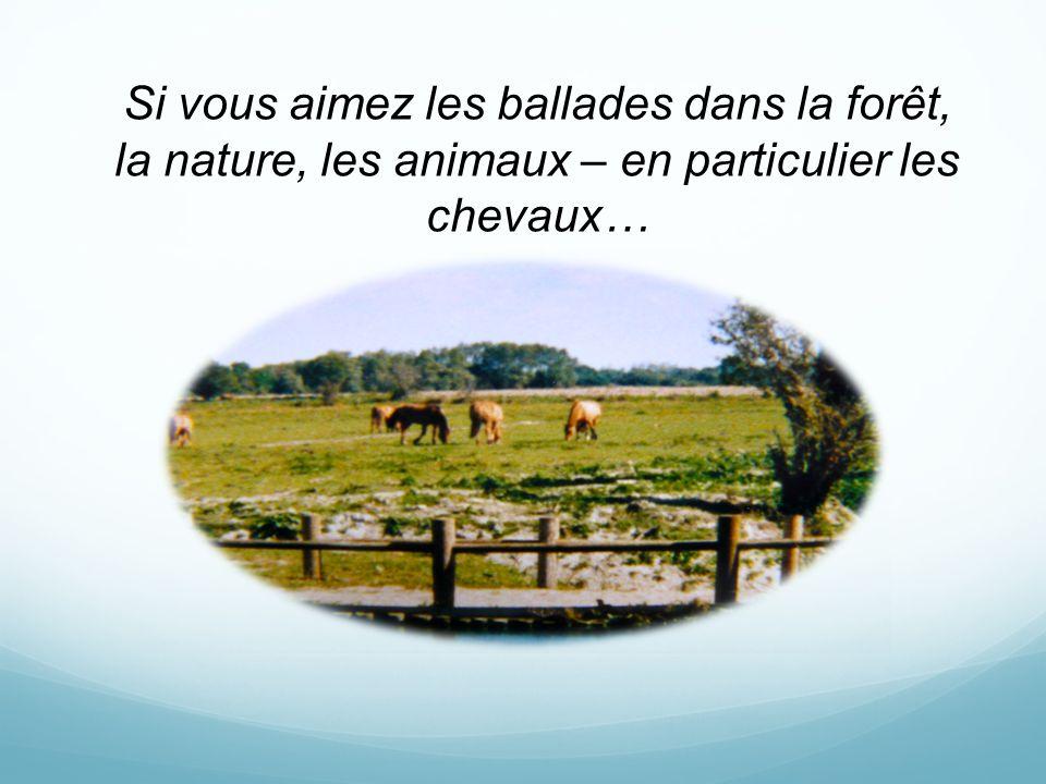 Si vous aimez les ballades dans la forêt, la nature, les animaux – en particulier les chevaux…