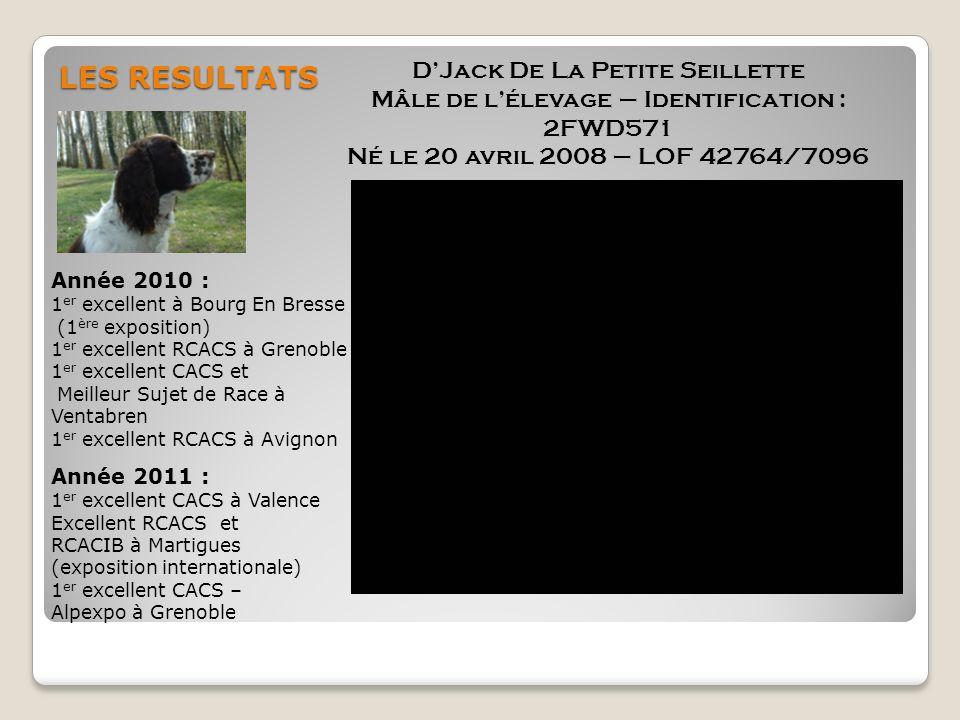 LES RESULTATS D'Jack De La Petite Seillette