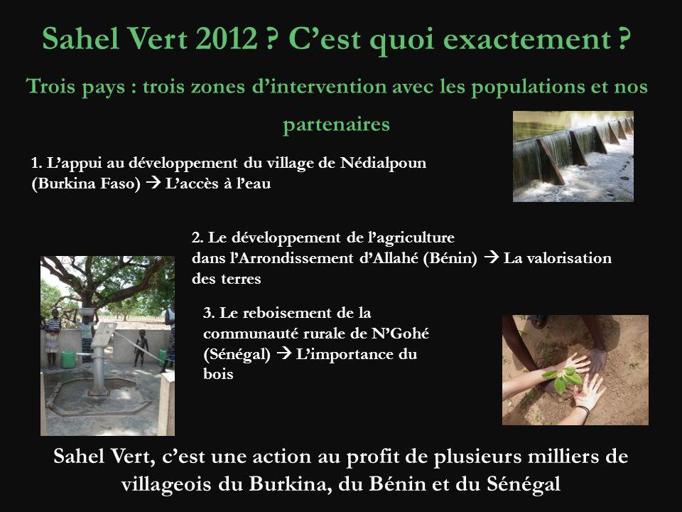 Sahel Vert 2012 C'est quoi exactement