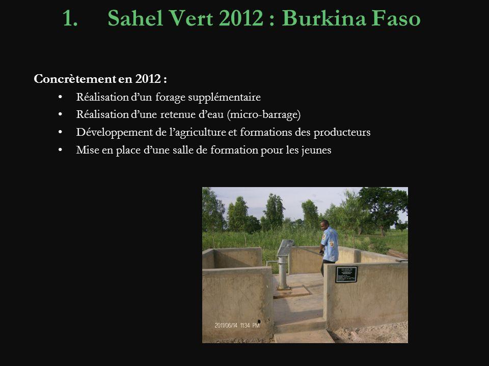 Sahel Vert 2012 : Burkina Faso