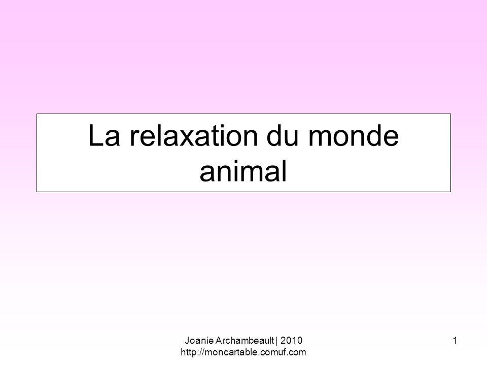 La relaxation du monde animal