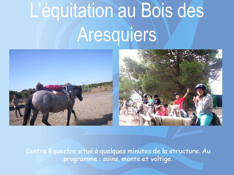 L'équitation au Bois des Aresquiers