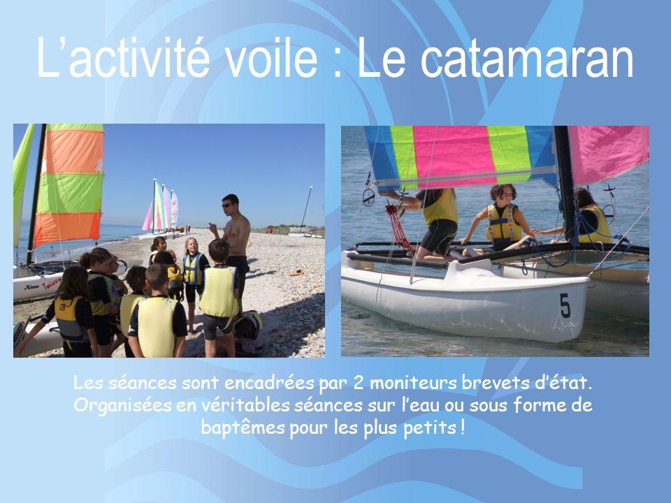 L'activité voile : Le catamaran