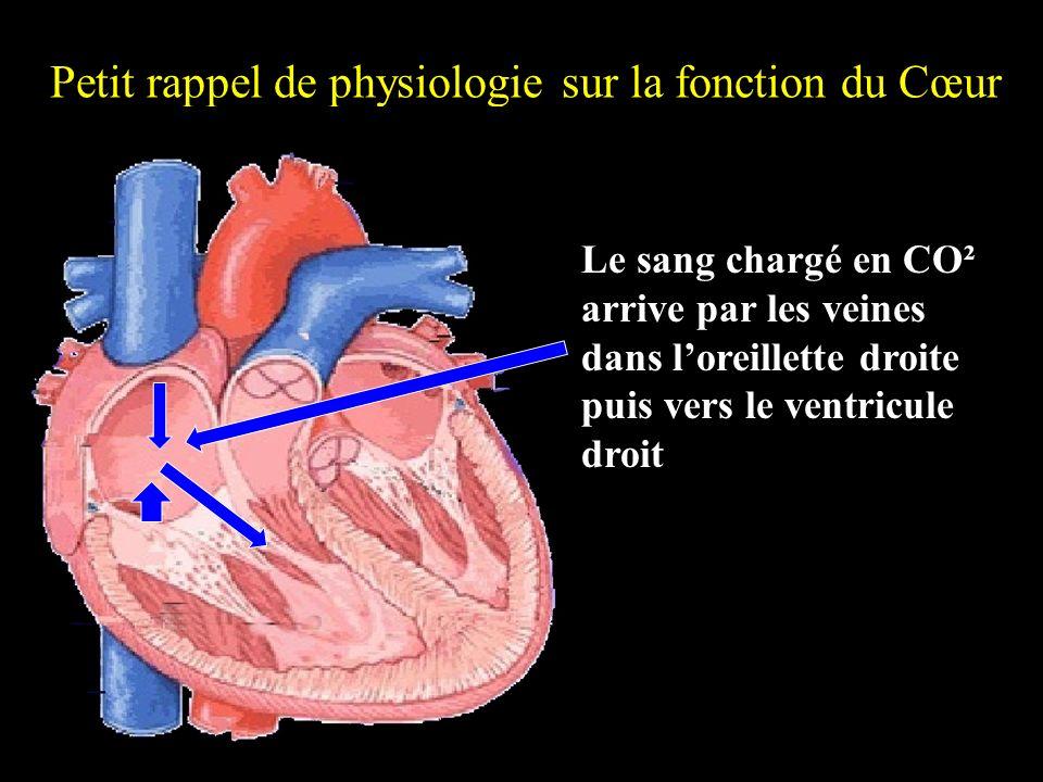 Petit rappel de physiologie sur la fonction du Cœur