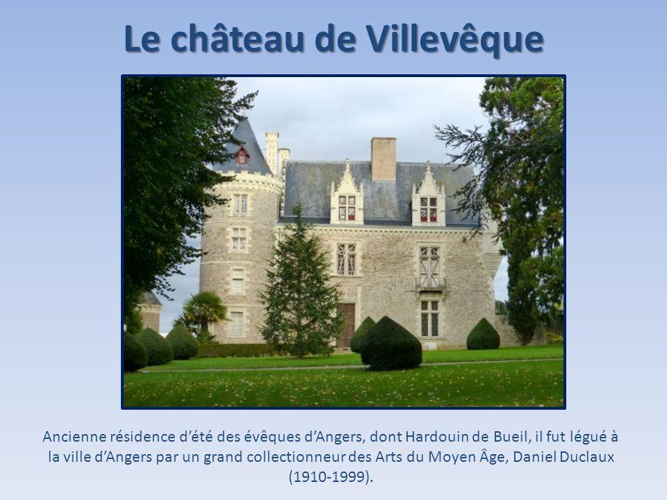 Le château de Villevêque