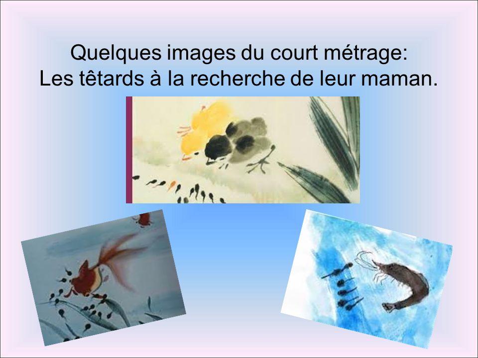 Quelques images du court métrage: Les têtards à la recherche de leur maman.