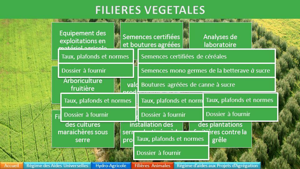 FILIERES VEGETALES Equipement des exploitations en matériel agricole