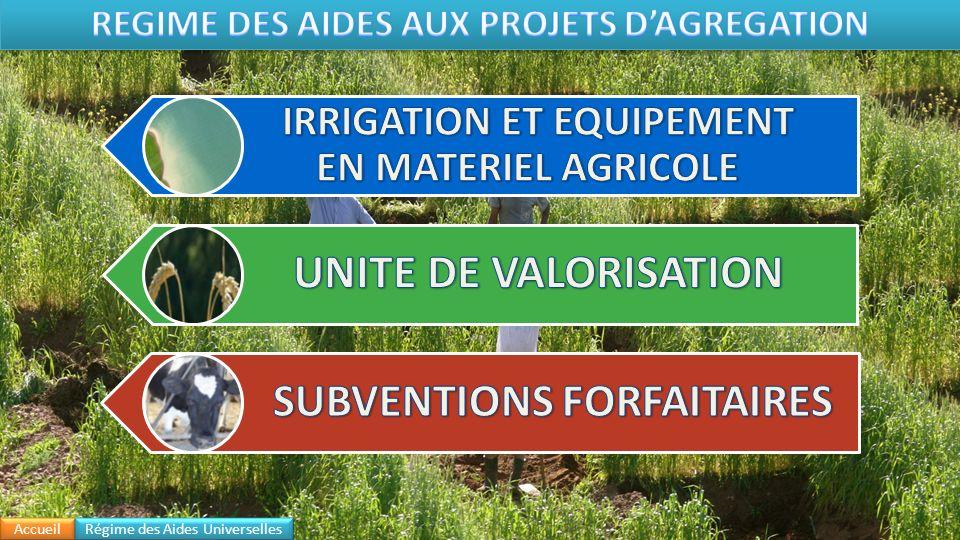 REGIME DES AIDES AUX PROJETS D'AGREGATION