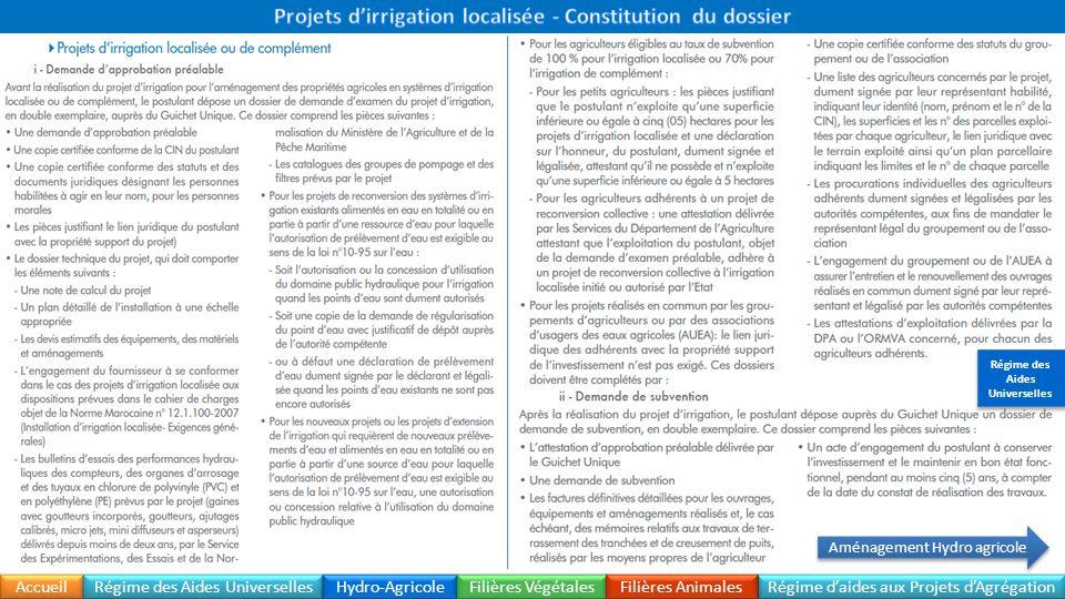 Projets d'irrigation localisée - Constitution du dossier