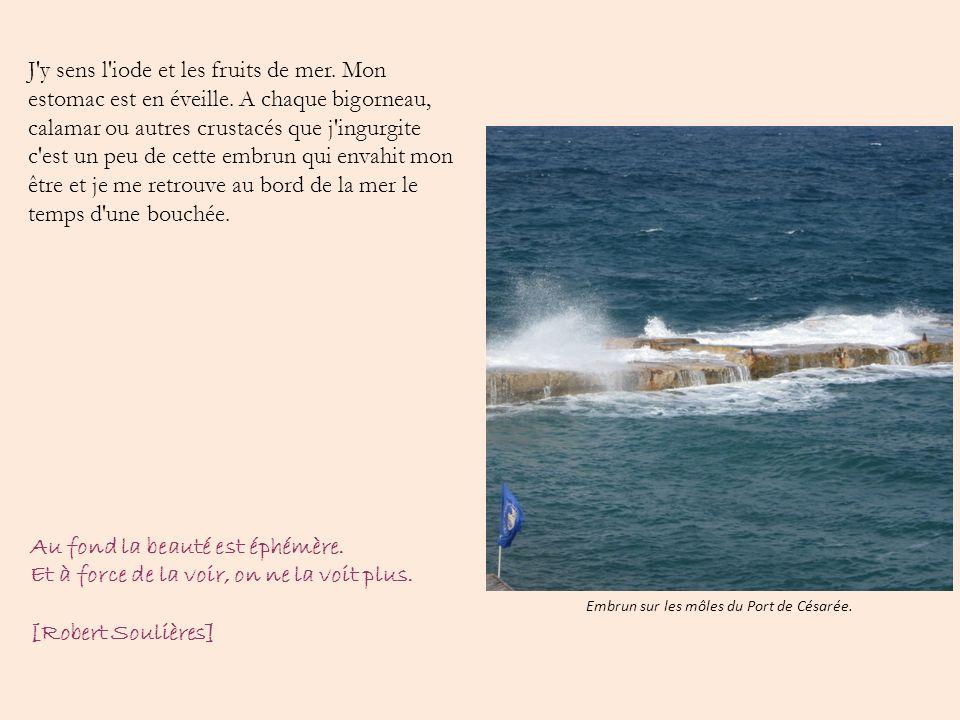Embrun sur les môles du Port de Césarée.