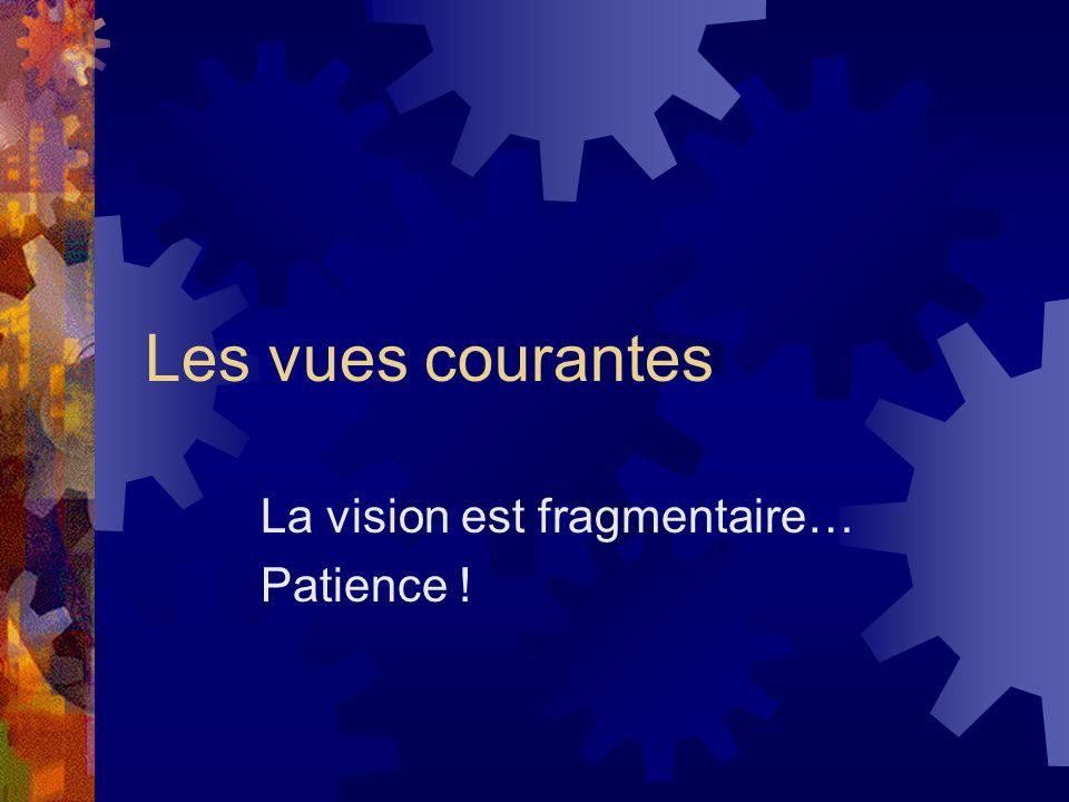 La vision est fragmentaire… Patience !