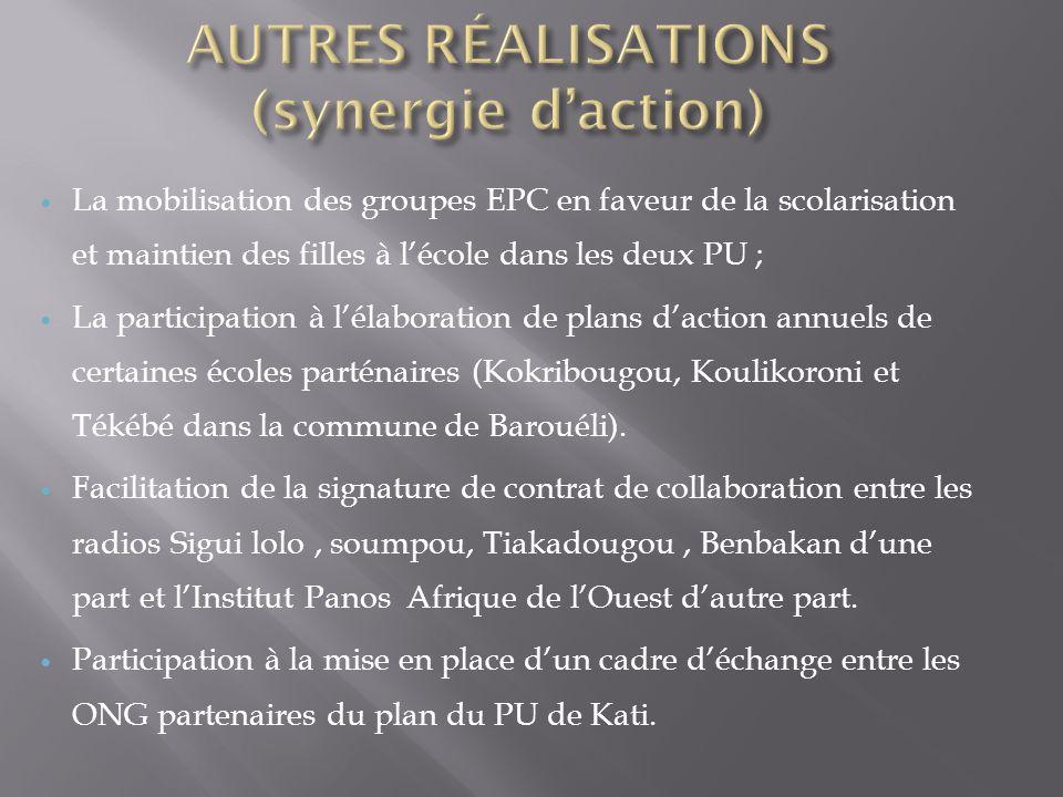 AUTRES RÉALISATIONS (synergie d'action)