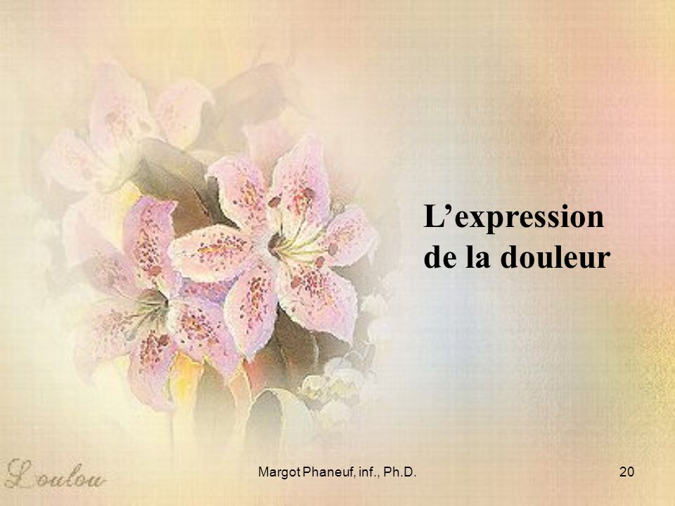 L'expression de la douleur Margot Phaneuf, inf., Ph.D.