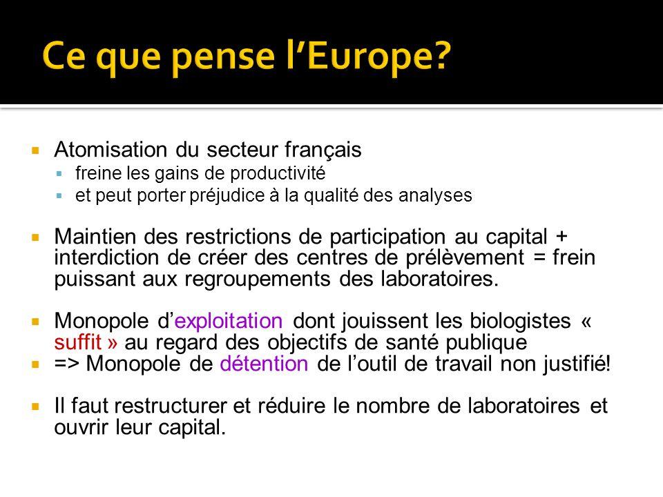 Ce que pense l'Europe Atomisation du secteur français