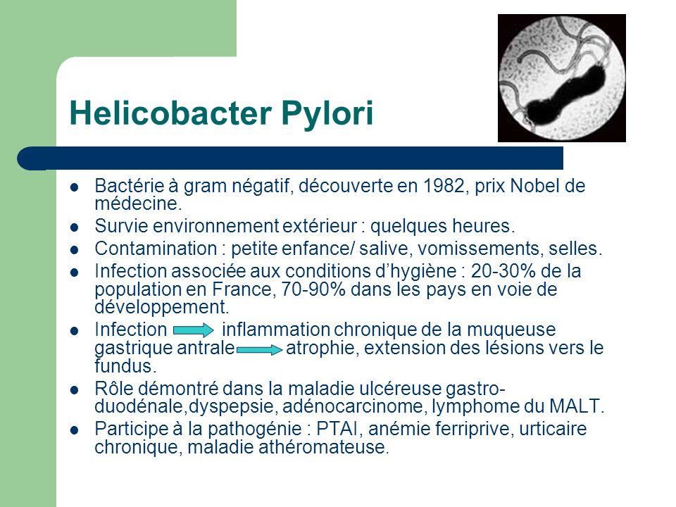 Helicobacter Pylori Bactérie à gram négatif, découverte en 1982, prix Nobel de médecine. Survie environnement extérieur : quelques heures.