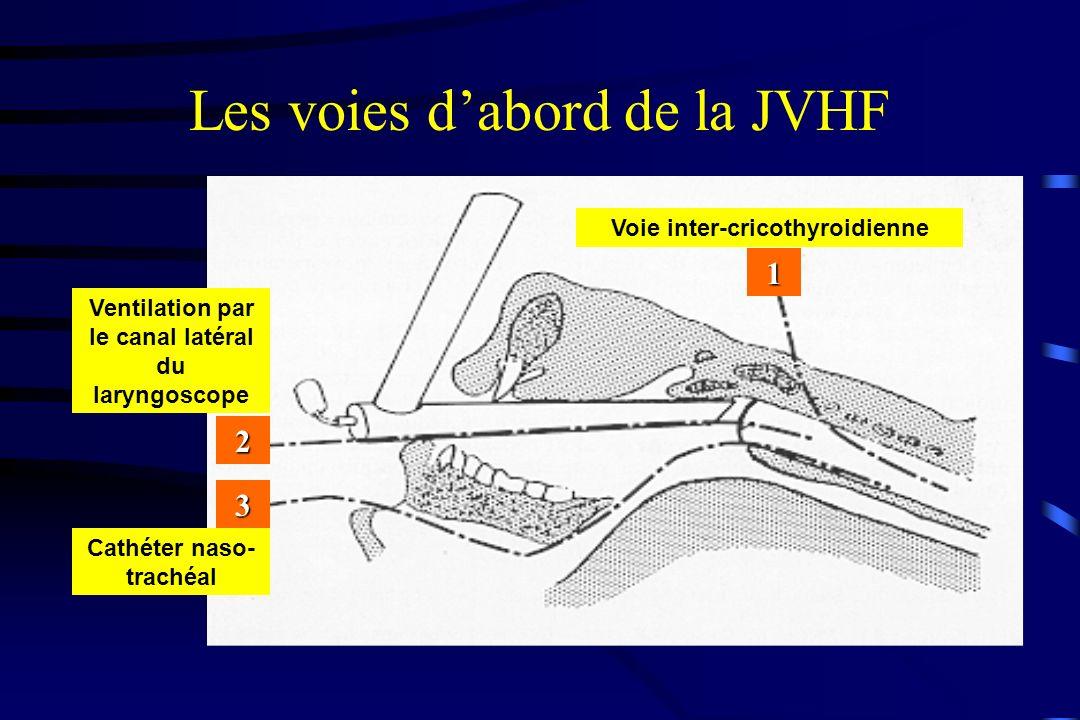 Les voies d'abord de la JVHF